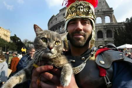 image de la vie quotidienne à Rome: Chat et Gladiatore dans images 23febbig